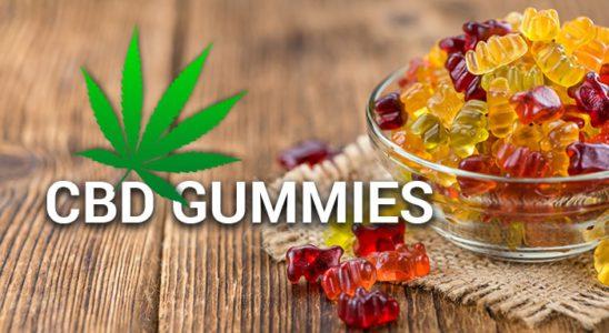 CBD Gummies - Les meilleurs et les plus savoureux de 2019 [Updated Review]