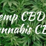 Chanvre CBD vs Cannabis CBD: Qu'est-ce que l'huile de chanvre CBD?