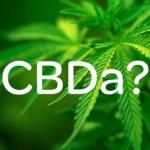 CBDA vs CBD - Quelle est la différence?