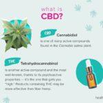 Votre guide de la CDB