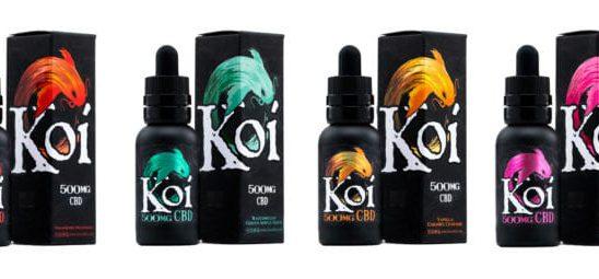 ⋆ Quelle est la distinction entre l'huile de CBD et le jus de vape CBD de Koi Naturals? ⋆ Tous les Gummies CBD