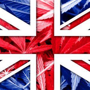 CBD à vendre à Shadwell, Angleterre, Acheter des produits bio au CBD au Royaume-Uni