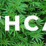 ⋆ Qu'est-ce que le THCA? - CBD College ⋆ Le temps de la CDB