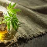 Quelle est la meilleure huile de support pour la CBD? Les 7 meilleures huiles pour porteurs de CBD • Bloom Hemp Company
