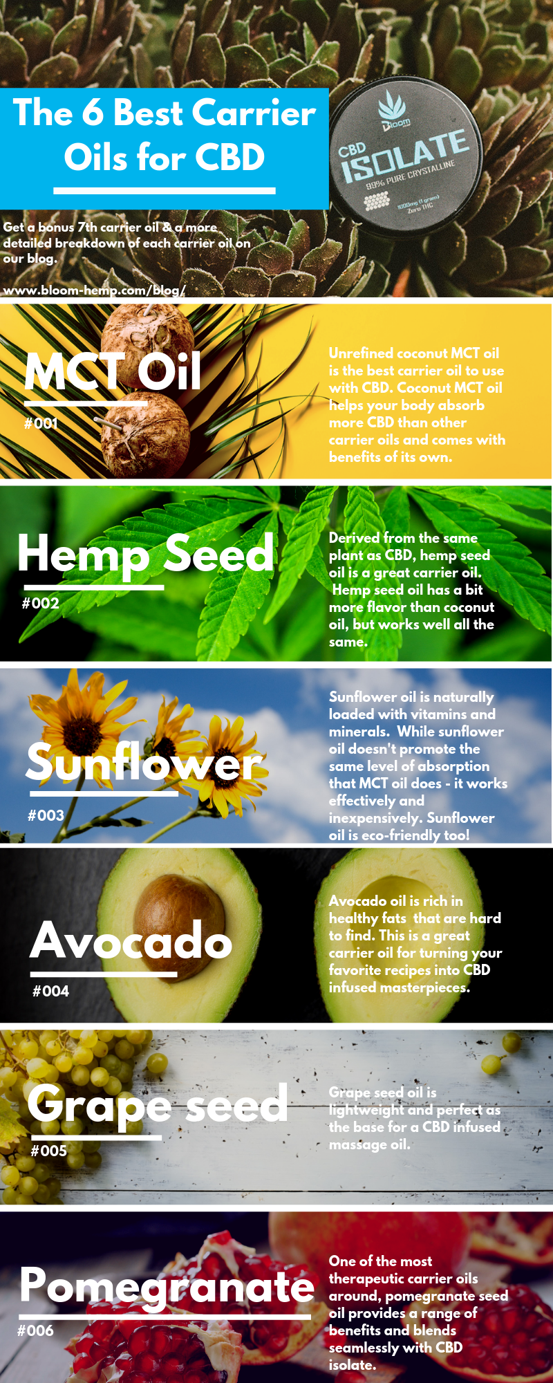 Best-CBD-Carrier-Oils Carrier-Oil-Info-graphic-CBD