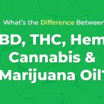 Huile de CBD, huile de THC, huile de chanvre, huile de cannabis et huile de marijuana