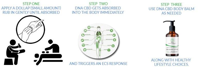 comment utiliser le baume lotion pour le corps DNA CBD en trois étapes faciles