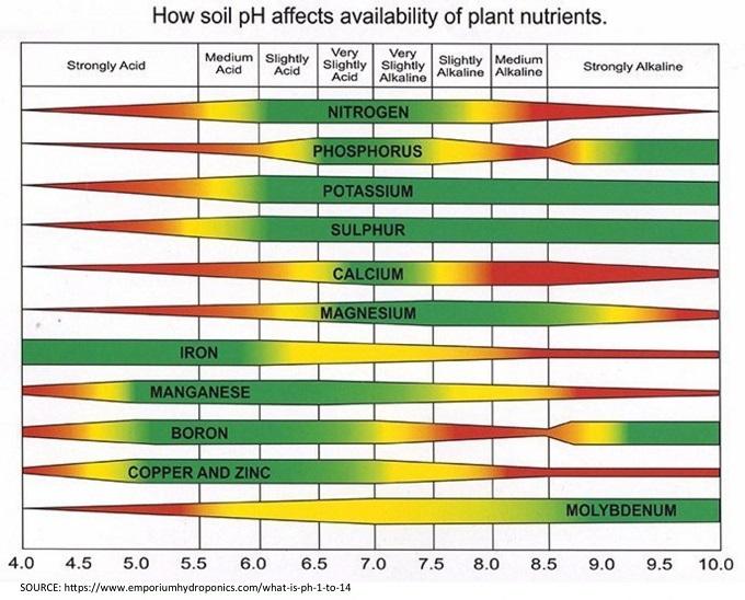 Acidité du sol et minéraux