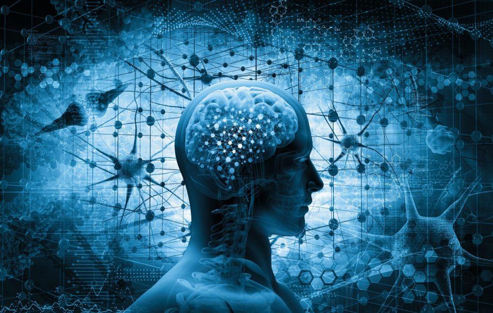 CBD Brain Injuries Head CTE Concussion UNited States CBD Boutique de CBD en ligne la moins chère CBD pour les athlètes Fiabilité L'athlétisme végétalien s'entraîne