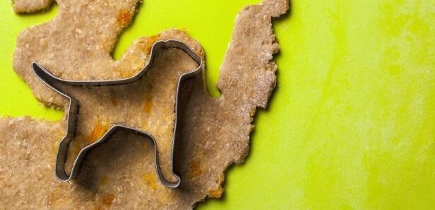 Gâteries pour chiens enrichies en CBD aux patates douces et yogourt
